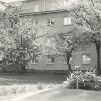 kkk_198.jpg